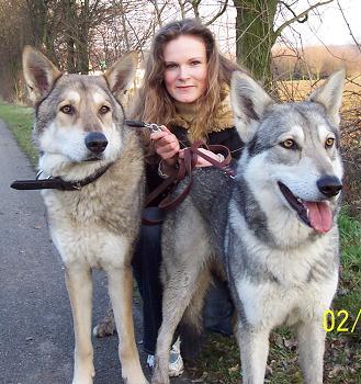 Wolfshunde Züchter